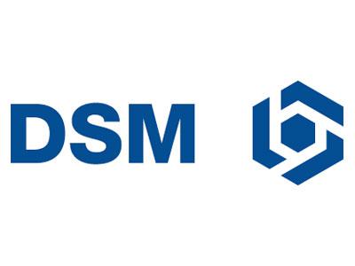 006-dsm